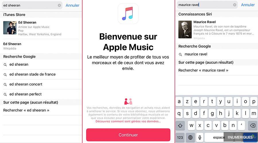 LesNums_Apple&Safari_Main.jpg