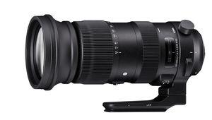 Sigma 60-600 mm f/4,5-6,3 DG OS HSM Sports: Bigma encore plus loin