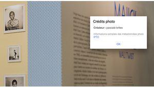 Google Images reconnaît le crédit photo