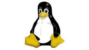 Grâce à Ubuntu Linux est devenu un jeu d'enfant, par Tom's Guide