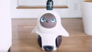 Lovot, le robot domestique qui ne demande qu'une chose: de l'amour