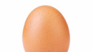 La photo d'un œuf devient l'image la plus aimée sur Instagram