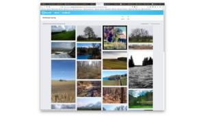 CC Search: comment trouver les meilleures images en Creative Commons