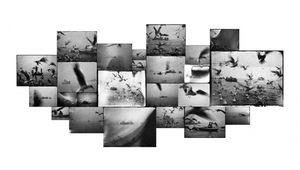Inspiration photo: les mondes de Michael Ackerman