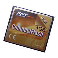 PNY CompactFlash 1GB 80x