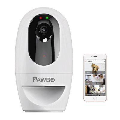 Caméra Pawbo+: chacun cherche son chat