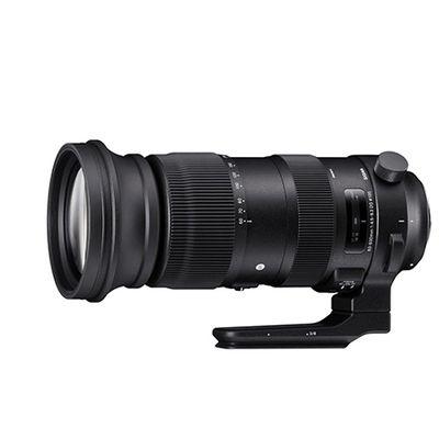 Sigma 60-600mm F4.5-6.3 DG OS HSM Sports: impressionnant!