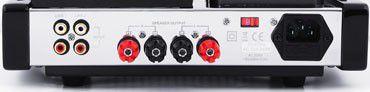ITube valve Amp Back
