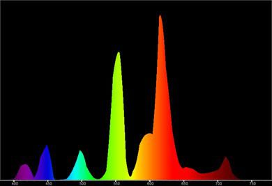 Fluocompact 20 W spectre