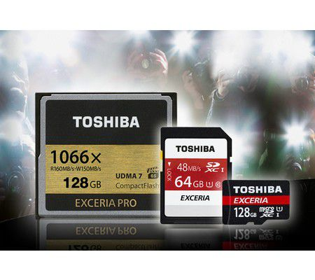 Toshiba Exceria 128 Go M301 microSD