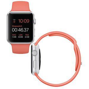 Apple Watch Standard