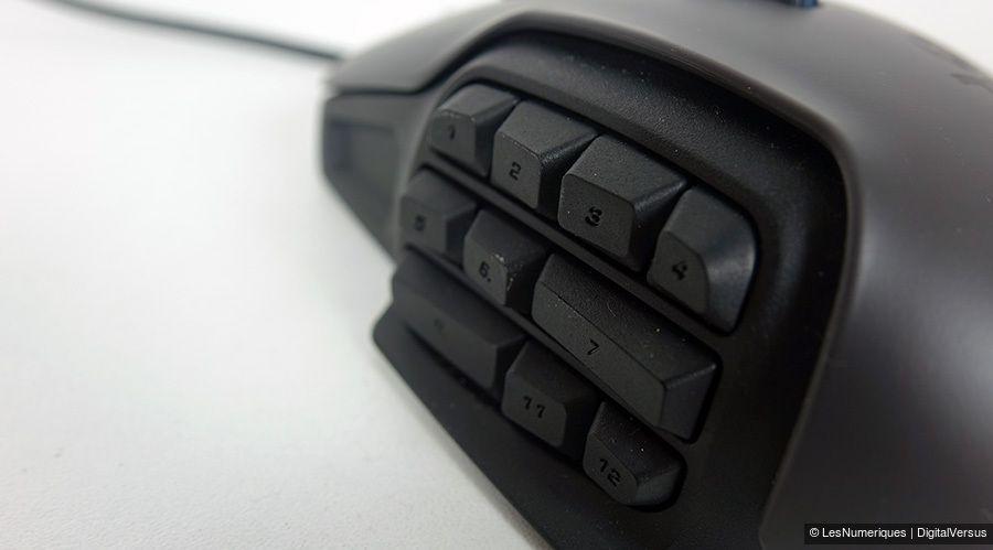 Nyth-boutons.jpg