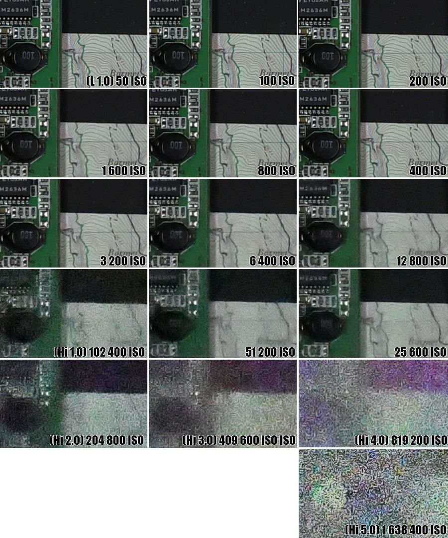Nikon D500 ISO LMDN1640000 900px(2)