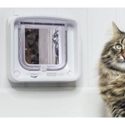 SureFlap: chatière connectée et chat bien gardé