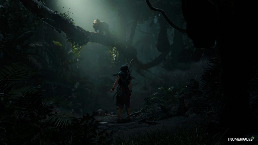 Shadow-of-the-Tomb-Raider_Test_04.jpg