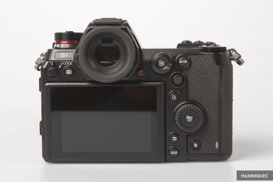 Panasonic Lumix S1-315.jpg
