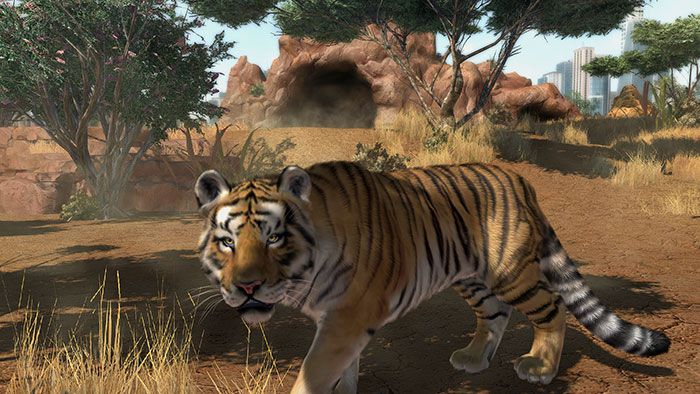 Zoo Tycoon 06 700px