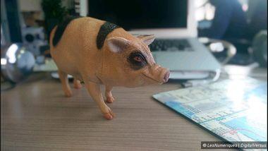 Fendre un cochon en deux et le poser tel quel sur le