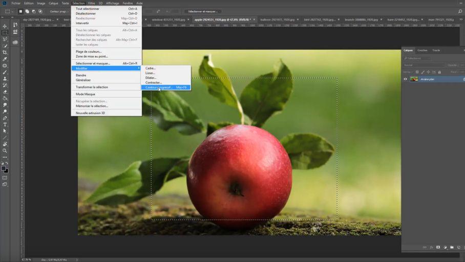 Tuto en vidéo – Découvrez les outils de détourage d'Adobe Photoshop