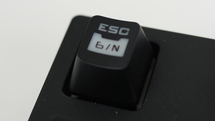 DSC08725